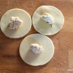 Dischi di pasta con il ripieno di cappone